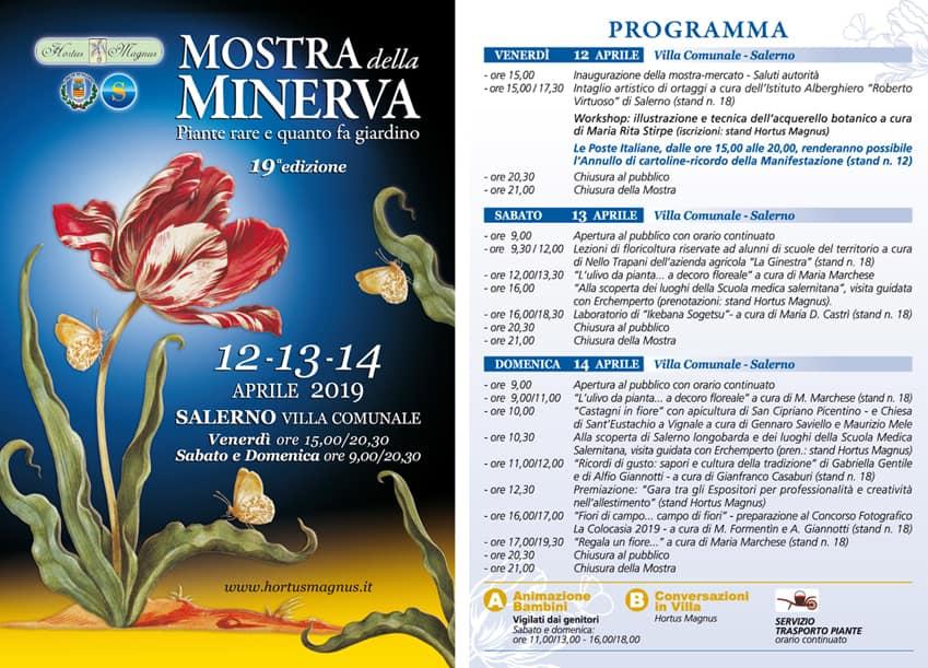 Salerno mostra della Minerva