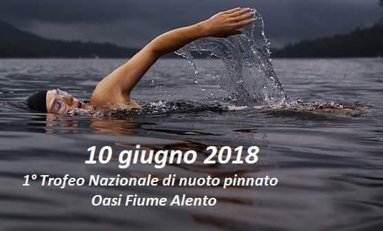 1 torneo nuoto pinnato Oasi Alento