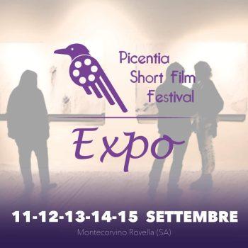 Picentia Short Film Festival 2019-4
