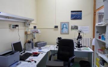 Furto-Ospedale-Eboli-Laboratorio-Macchinari-trafugati