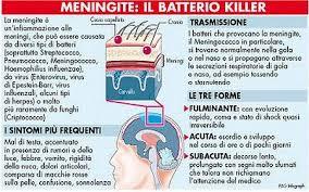 meningite-battero killer