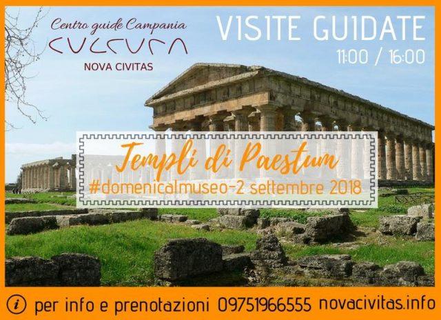 paestum-visite guidate ai templi