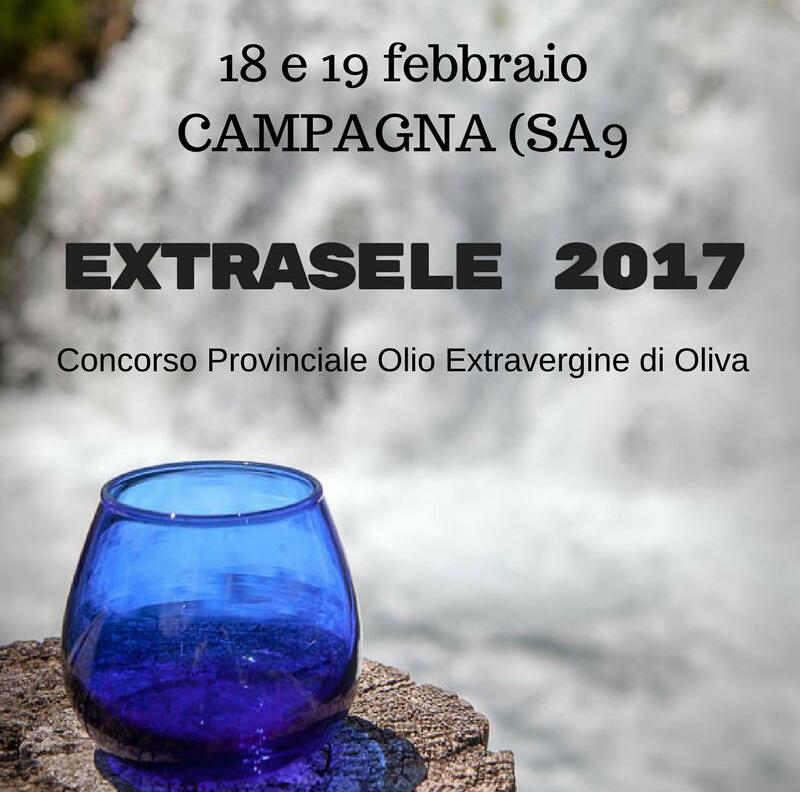 Campagna-1 Concorso Provinciale-Extrasele 2017