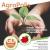 """""""Agropolis"""" Convegno a Paestum su sviluppo e agricoltura"""