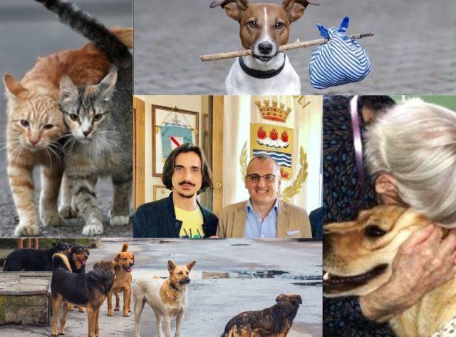Randagismo e abbandono animali-Piegari-Cariello