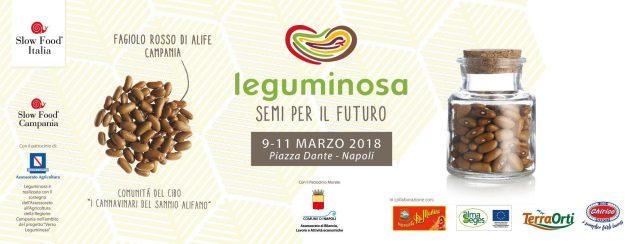 Leguminosa2018