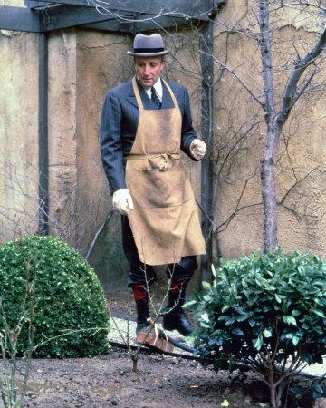 Peter Sellers-oltre-il-giardino