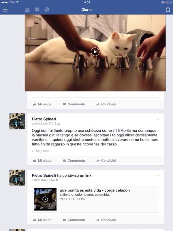 Spinelli-Facebook-1