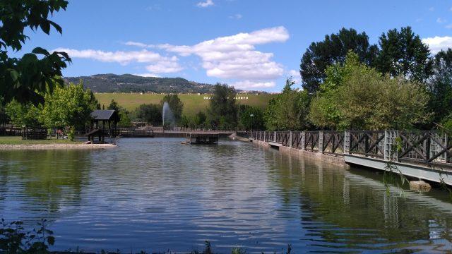 Parco Oasi Fiume Alento-1